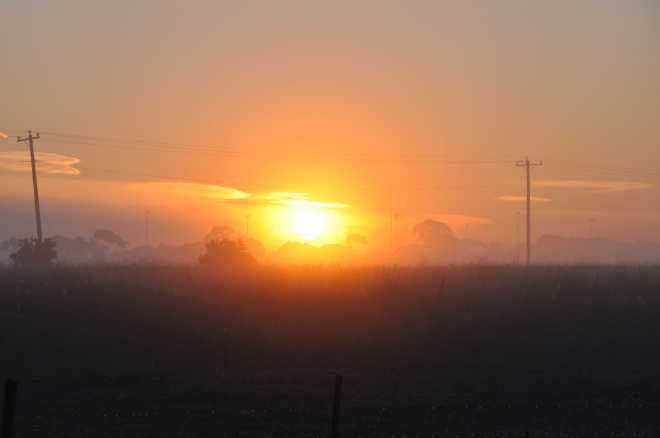 Sunrise1_1833