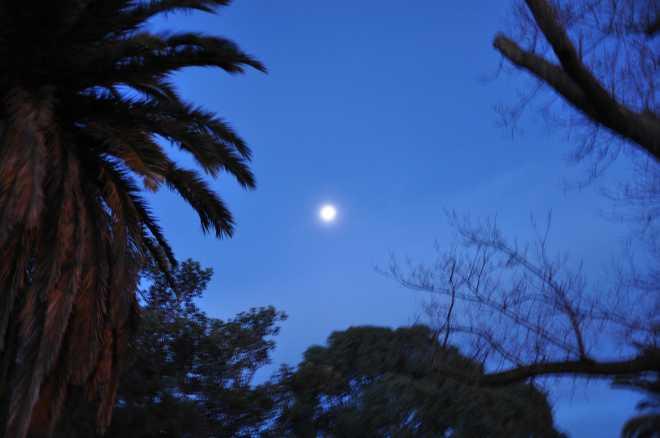 Moon_1869