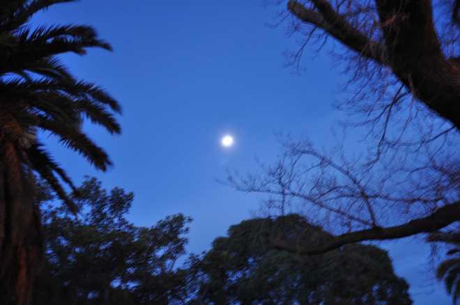 Moon_1872