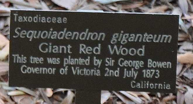 Redwood-plaque_1273