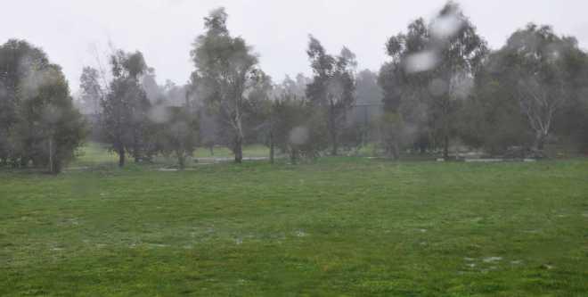 Rain_1890a