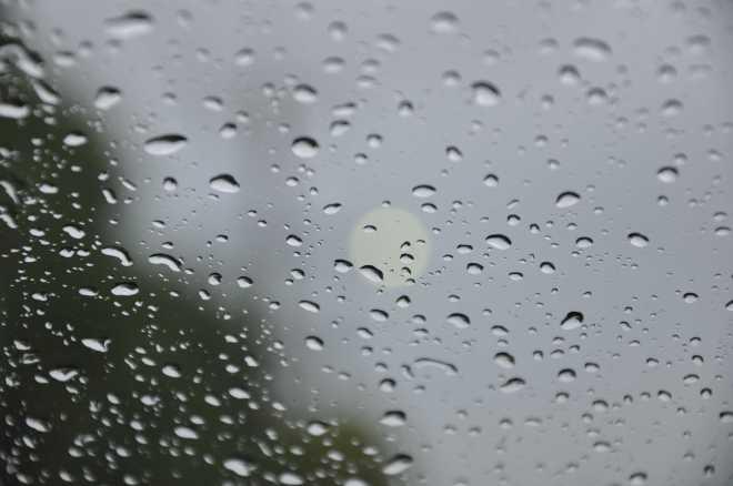 Rain_1910