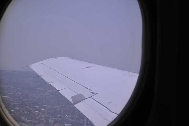 wing_0056