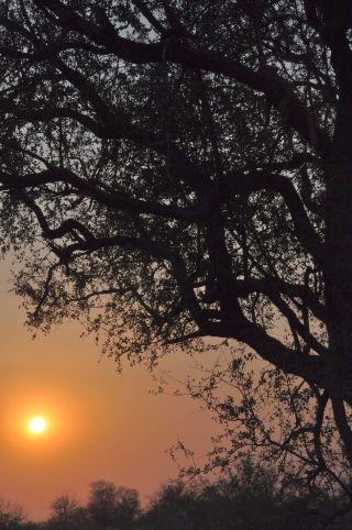 sunset3_0720a