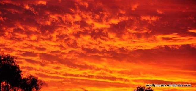 sunset_0254