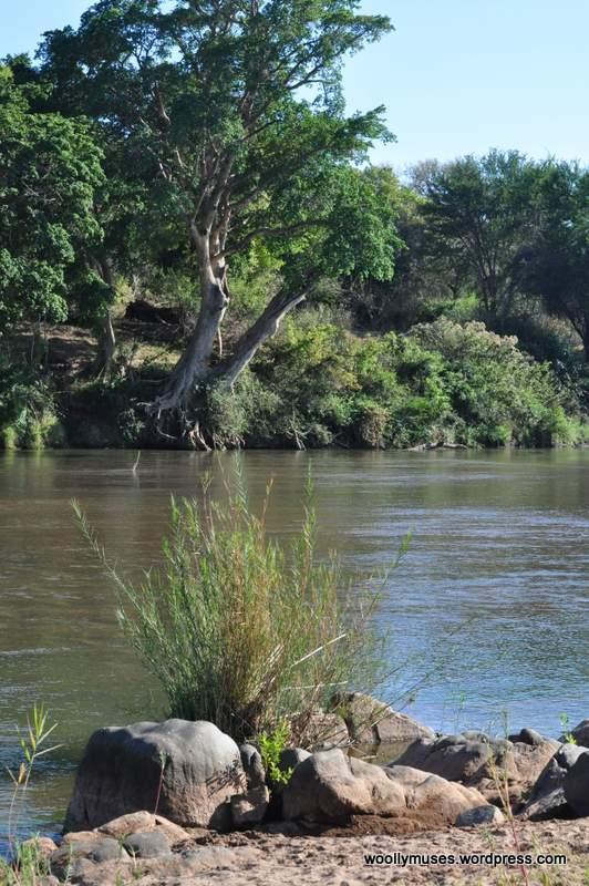 river_0134