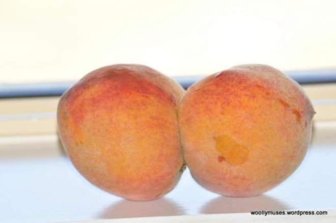fruit_0429