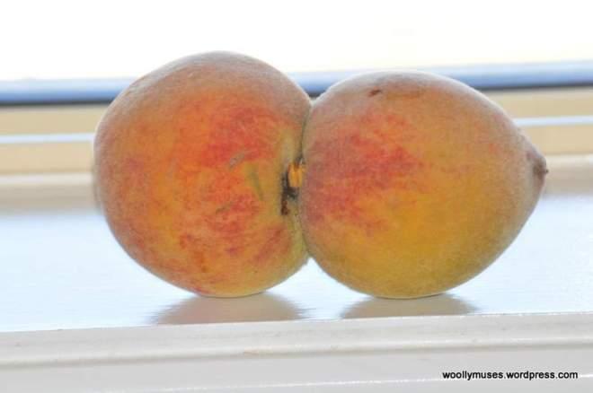 fruit_0430