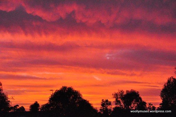 sunset_0350