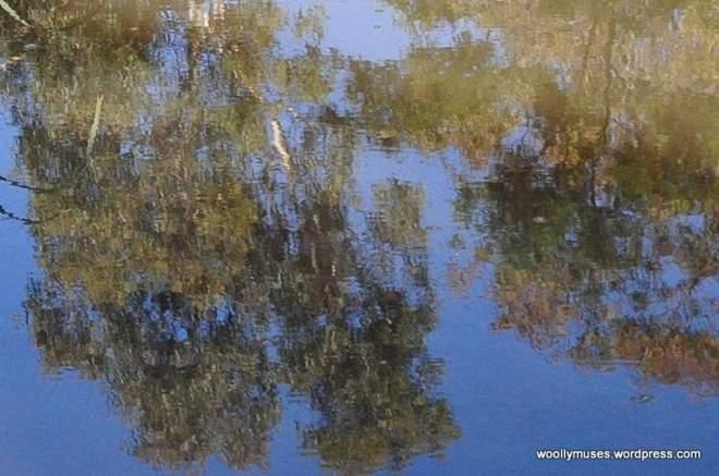 lagoon_0457