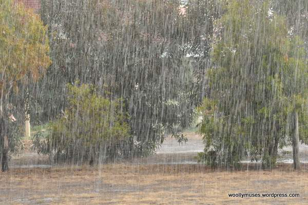 rain_0012