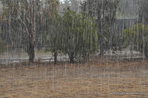 rain_0014