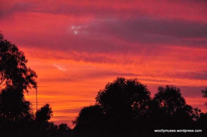 sunset_0357