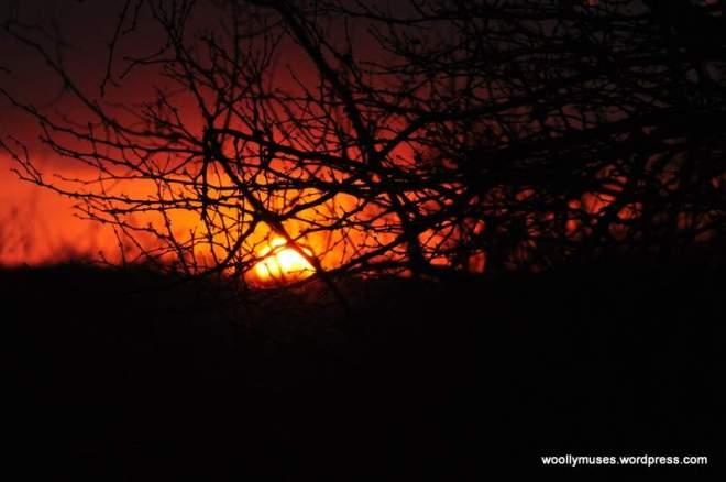 sunset_0771