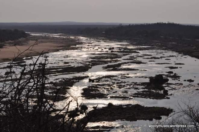 river_0309