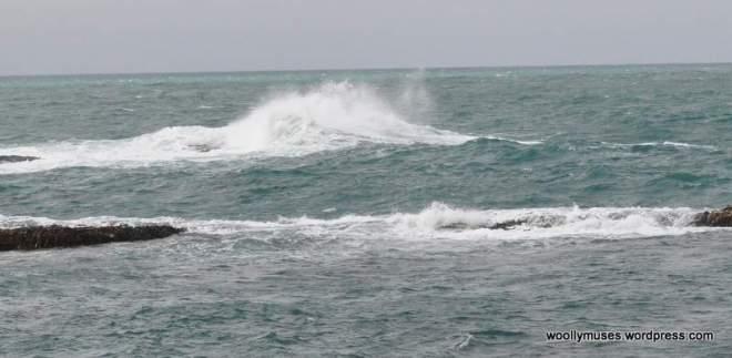 sea_0470