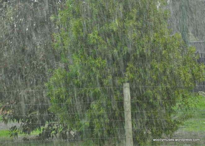 rain_0060