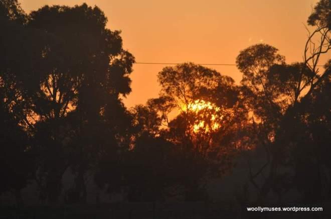 sunrise_0004