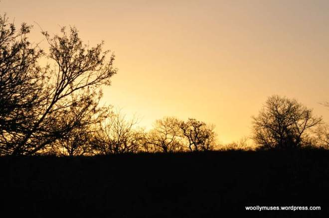 sunset_0348