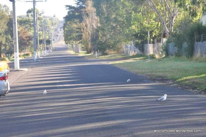 roads_0406