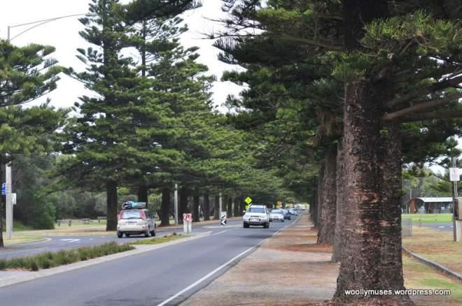 roads_0437