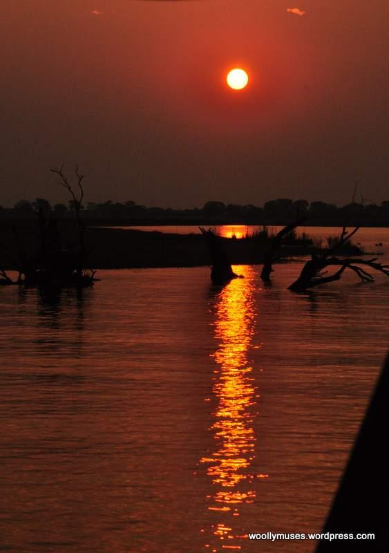 chobe sunset_0916