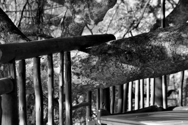 Kwa Nokeng Lodge_0186