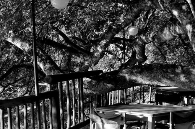 Kwa Nokeng Lodge_0188