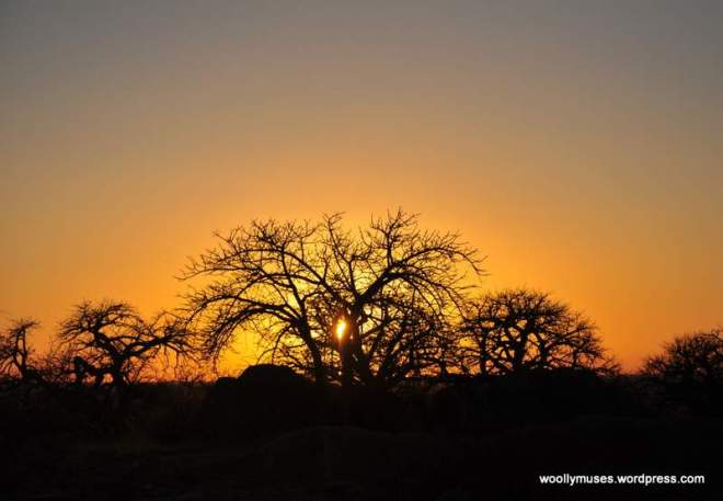 lekhubu-sunrise_0856