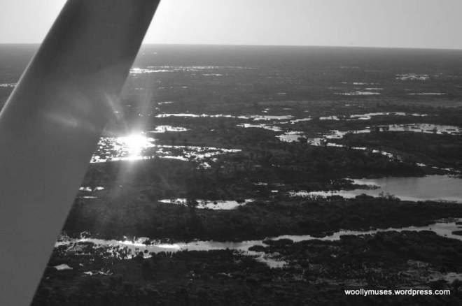 okavango-delta_0594