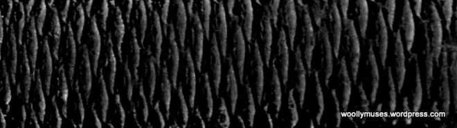 pattern_1453