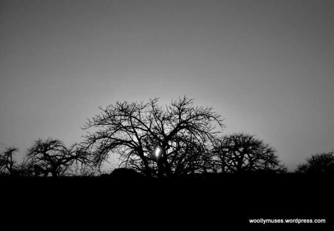 sunrise lekhubu_0856