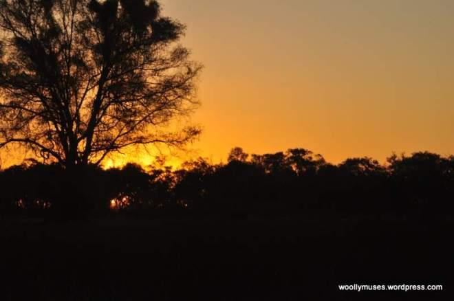 sunrise_0043