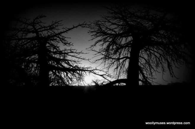 sunset-lekhubu_0766