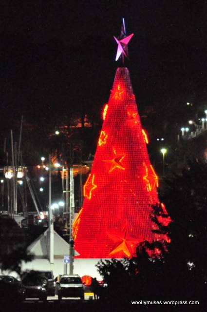 Floating Christmas Tree Geelong