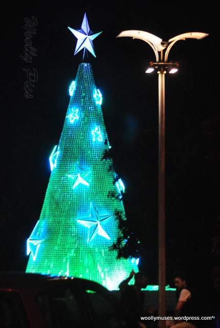 Geelong Floating Christmas tree_0581