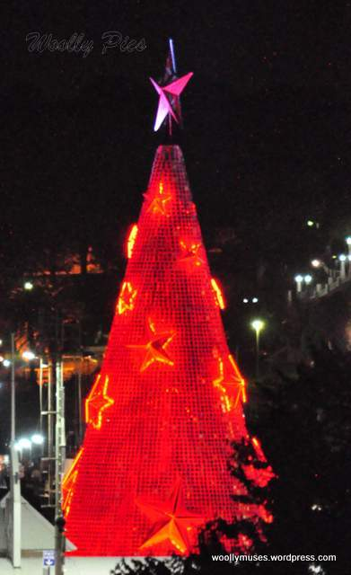 Geelong Floating Christmas tree_0603