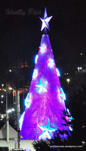 Geelong Floating Christmas tree_0630