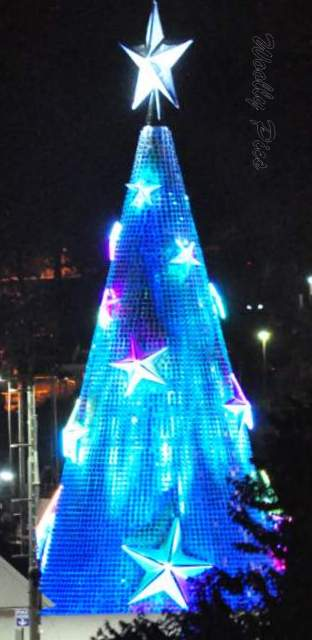 Geelong Floating Christmas tree_0688