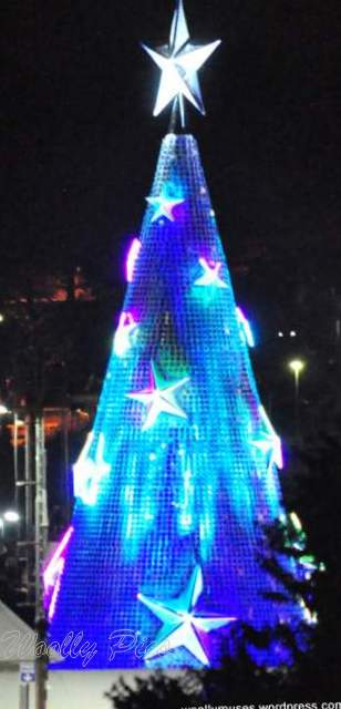 Geelong Floating Christmas tree_0697