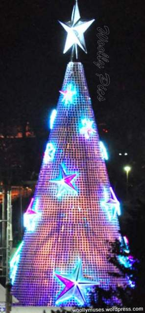 Geelong Floating Christmas tree_0701