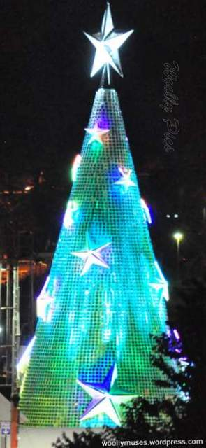 Geelong Floating Christmas tree_0728
