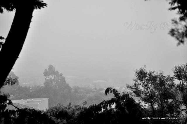 rain_023
