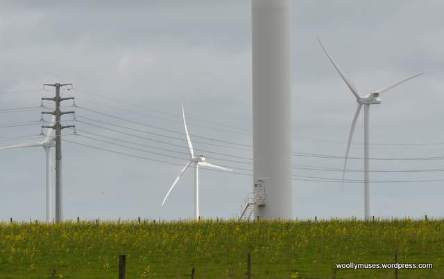 windfarm_1595