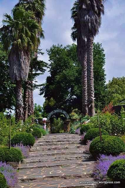 Botanic-gardens_0129