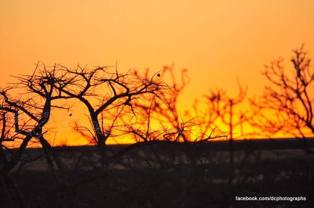 lekhubu_sunset805