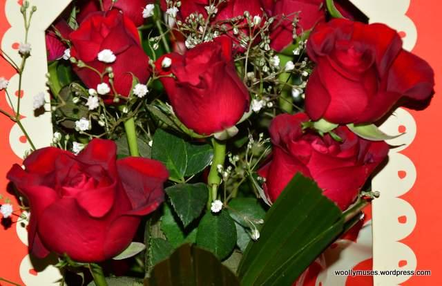 roses_4445