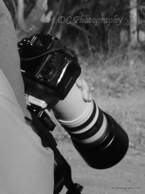 camera_0021