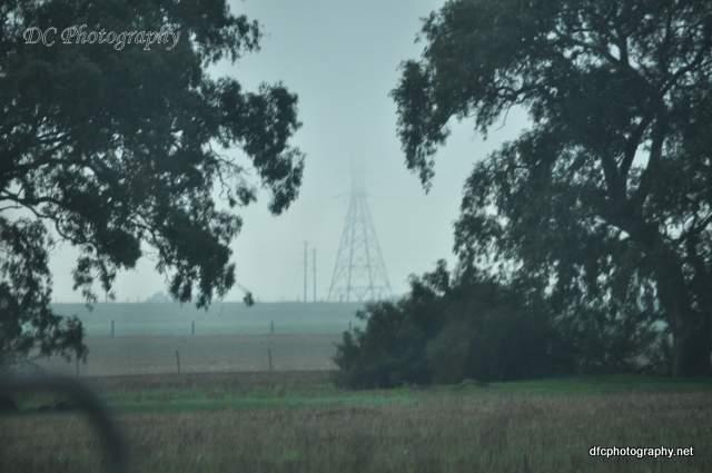 fog_0003