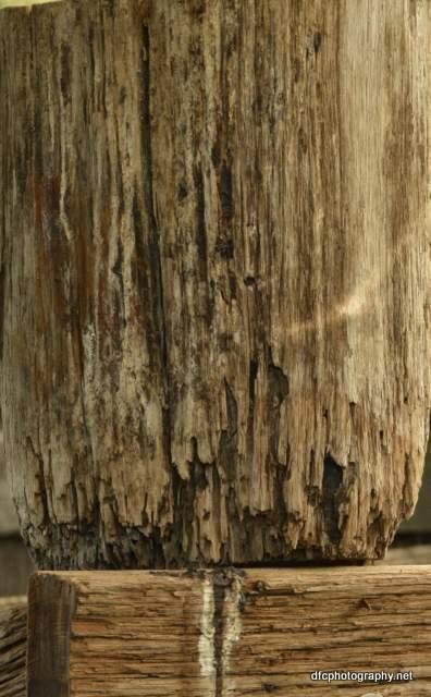 wood_5190